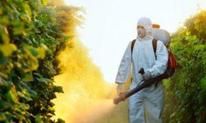 Давление и пестициды